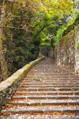 Bergamo (in the grove), Lombardy