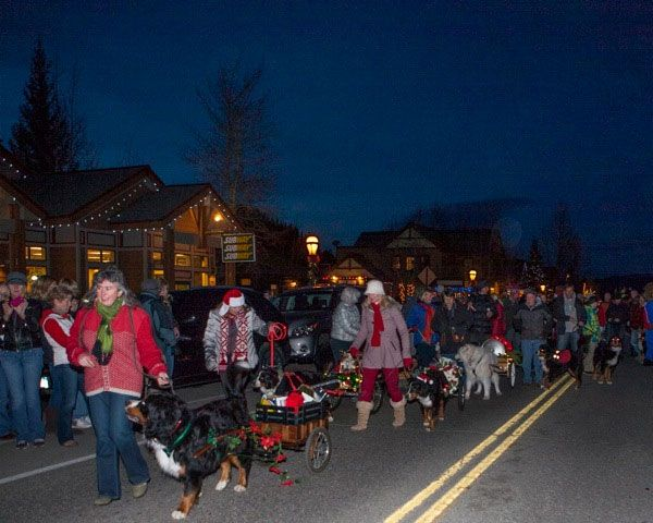 Winter Holiday Happenings | Breckenridge Events | Bernese Mountain Dog Parade