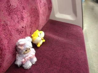 Unagi Travel - Japan Travel Agency for Stuffed Animals
