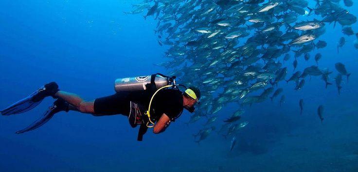 Baliku Dive Resort - Amed, Bali :: East Bali Villa Accommodation
