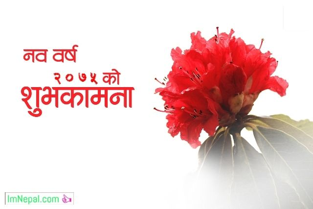 Happy Nepali New Year 2075 Greeting Wishing Cards Wishes Messages