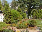 Enhance the value of your property by adding beautiful landscape design in Muttontown. I am Scott Anderson is member of NSLGA, having complete knowledge of landscape designing.
