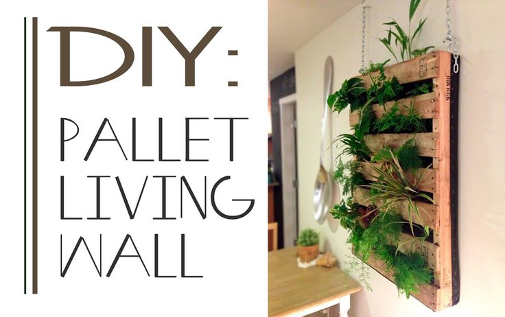 How to make Pallet Living wall