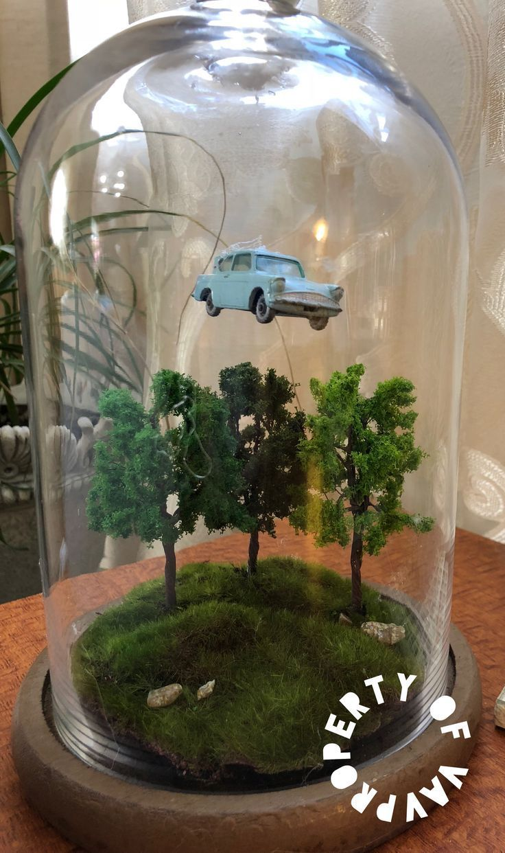 Terrarium Harry Potter La chambre des secrets