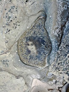 photos from weekend at Lorne - wave cut platform - face in rock pool
