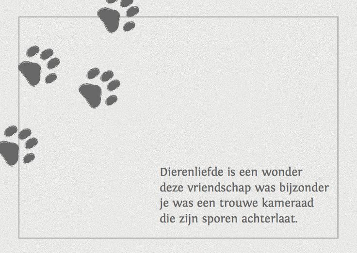 Afbeeldingsresultaat voor condoleance bij overlijden hond