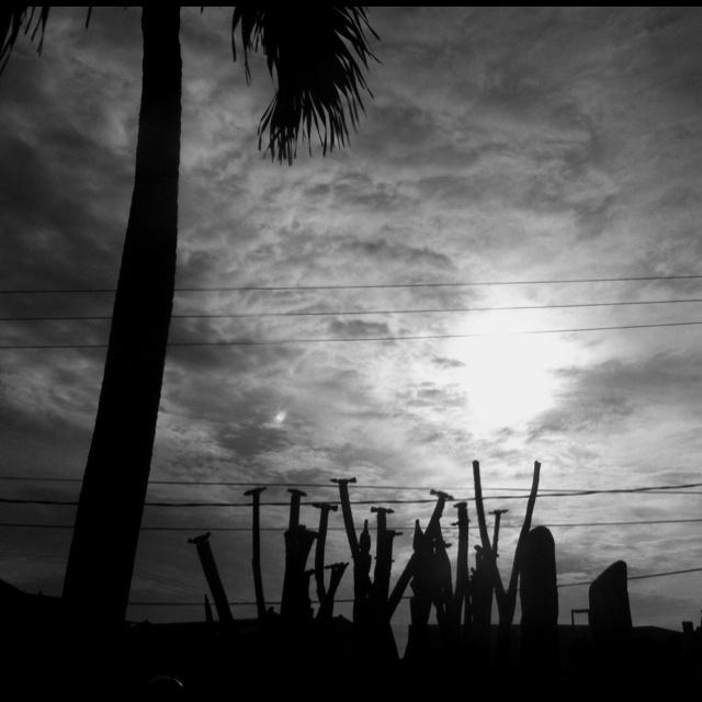 Sticks On Horizon | Bali, Indonesia