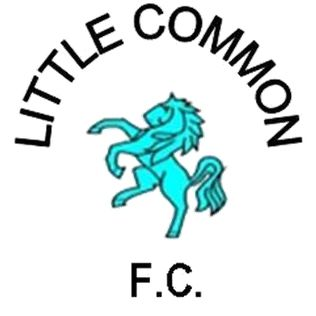 Little Common F.C. is a football club based in the Little Common area of Bexhill, East Sussex, who currently play in Division Two of the Sussex County Football League. The club were founded as Albion United and were later renamed Little Common Albion, before dropping the 'Albion' from their name and are based at Little Common Recreation Ground.[2] They are currently members of the Southern Combination Division One and play at the Recreation Ground.