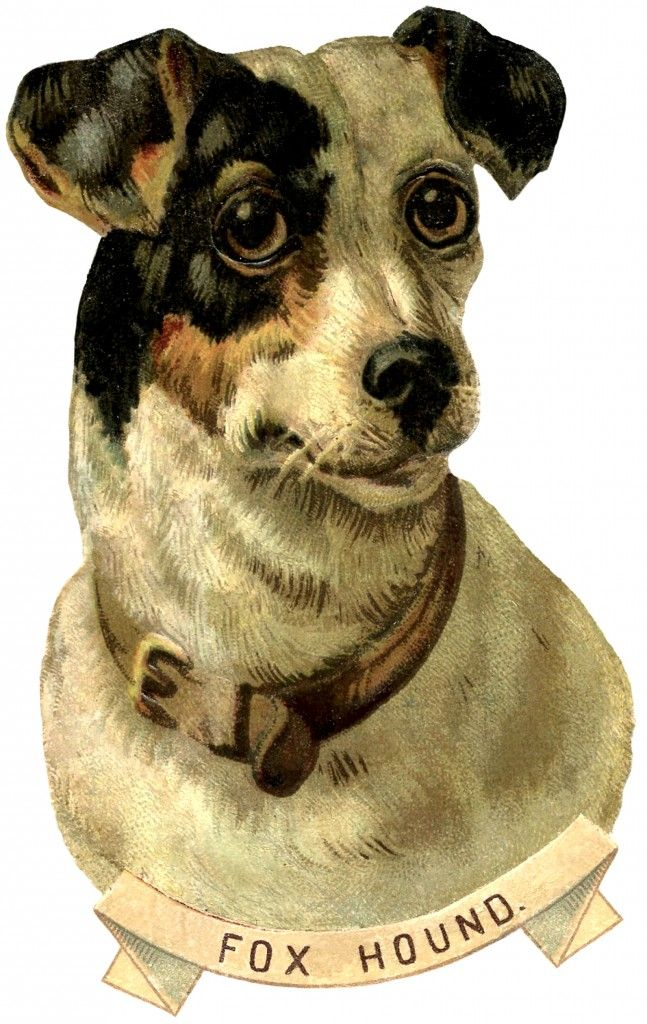 Free Vintage Dog Image