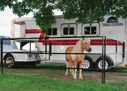 70 Best Horse Trailer Dressing Room Ideas Images On