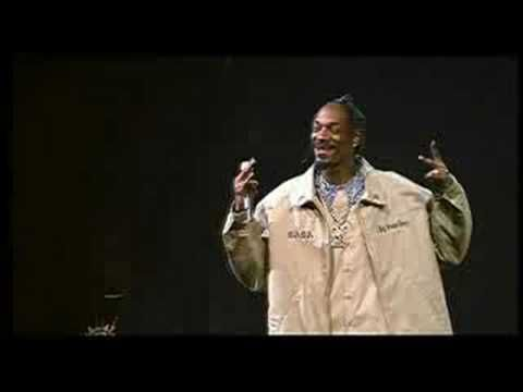 Dr.Dre, Snoop Dogg & Tupac - California Love (Up In Smoke Tour)
