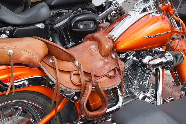 15 best images about harley davidson on pinterest horse for Sillas para caballos