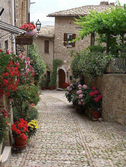 Ramatuelle ~ Provence ~ Alpes-Côte d'Azur ~ France