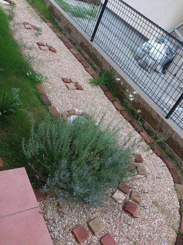 莉迦さんの作品『防草土「まさ王」&レンガでJUNK ガーデン作り ... ... た庭を自分なりに作り変えました。 今はラベンダーや花がいろいろ咲いてきています。 雑草もだいぶ少なくなり防草シートのおかげで簡単に抜けるようになりました。