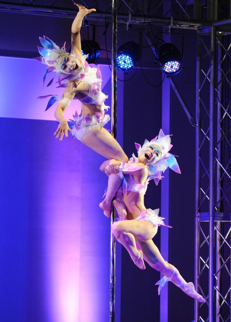 【5月14日 AFPBB News】ポールダンスのアクロバティックな技と優美さを競う「ミス・ポ #ポールダンス #技