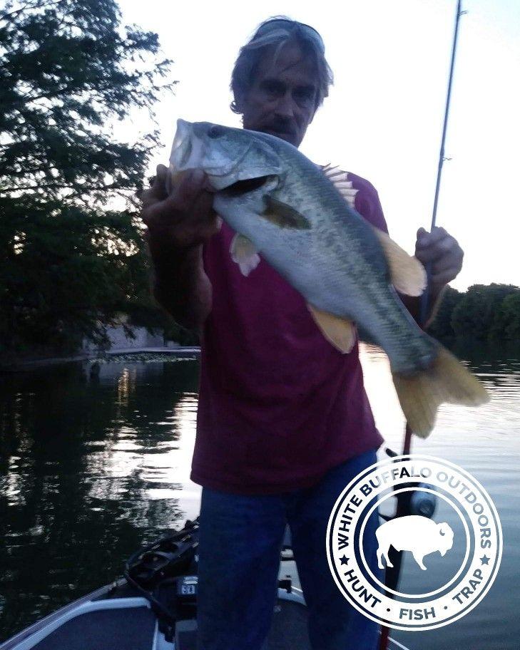 Texas Bass Fishing Michael Mccune Fishing Photo Bass Fishing Fish