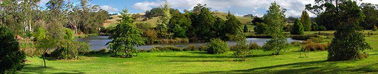 Tasmanian Arboretum nr Eugenana