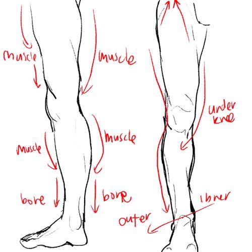 Detalles pequeños pero importantes para piernas masculinas...