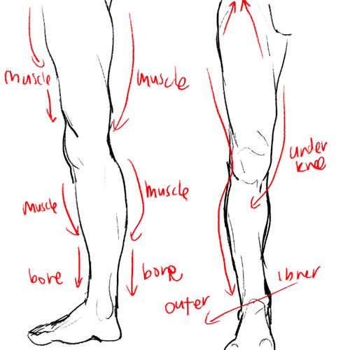 pinterest.com/character design and learn how to draw: legs