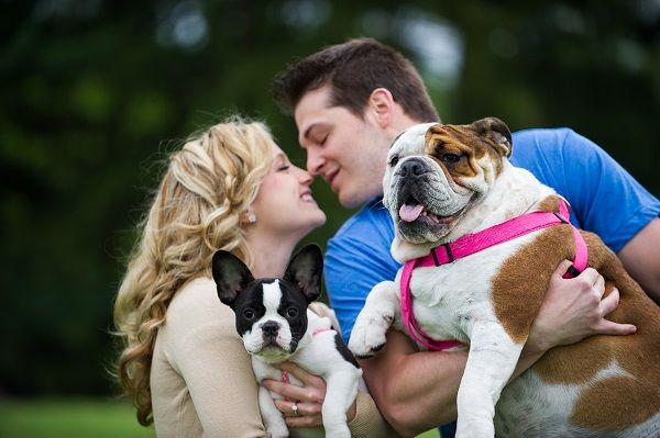engagement photos with dogs © Brittany Anderson Photography. Frenchie, English Bulldog