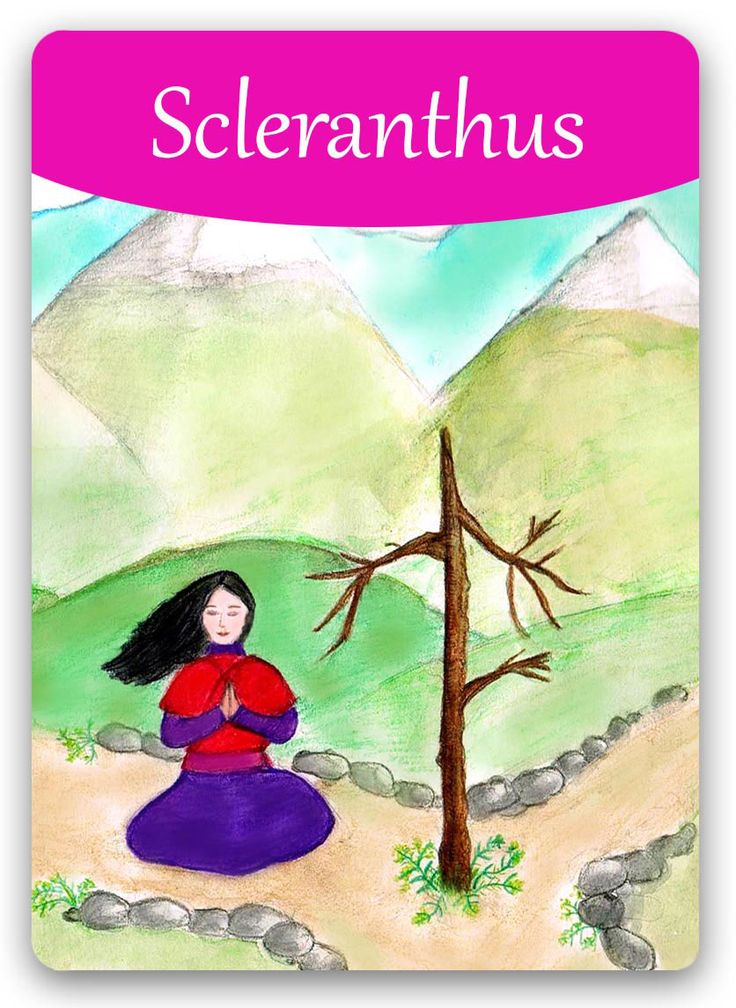 Bach Flower Cards [Scleranthus] - The Scleranthus personality is clearly out of balance, but is constantly seeking that balance and trying to come to good decisions.This indecision causes her to miss opportunities, because the rest of the world simply won't wait weeks for her to make up her mind. After treatment, she will show great powers of concentration and determination, she'll be versatile and flexible, able to consider both sides of an issue and come to a correct decision.