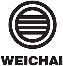 Weichai Engine Parts, piston, pistion ring, conrod bearing, main bearing, cylinder head, gasket, oil seal. Disc clutch, pressure clutch, steering pump, oil pump, water pump, wheel hub, spring leafs, wheel bolts, transfixion shaft, injection pump, cross joint, cross joint flange, ignition key set, flasher relays, starter relays, fog lamp switch, dll