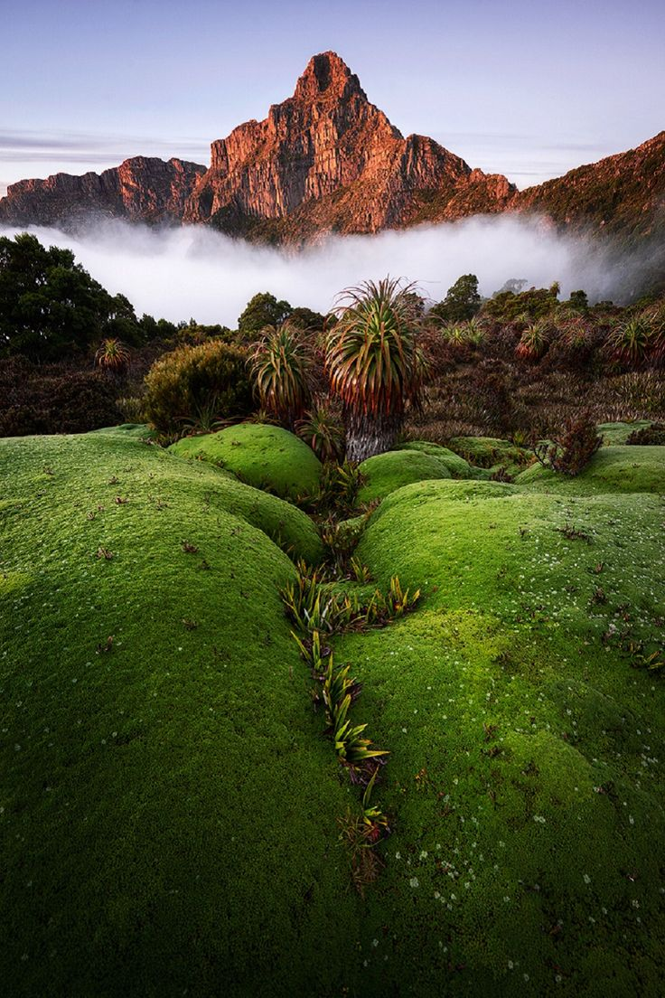 South-West NP, Tasmania, Australia, by Chris Wiewiora
