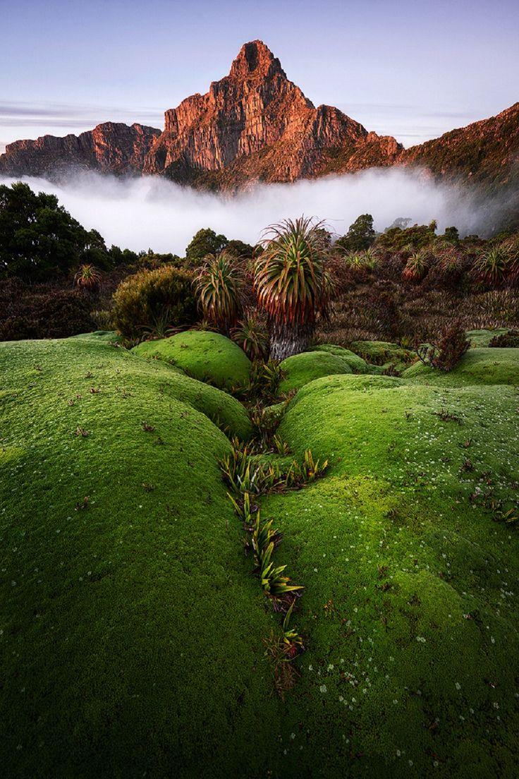 South-West NP, Tasmania, Australia, by Chris Wiewiora