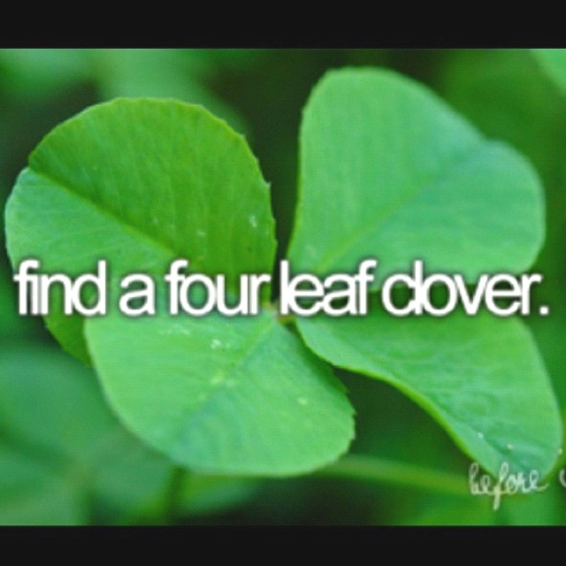 Bucket list , couldnt help but think of WHEN i would find a three leaf and always rip one of the leafs and said I found a 4 LEAF CLOVER to my mom!