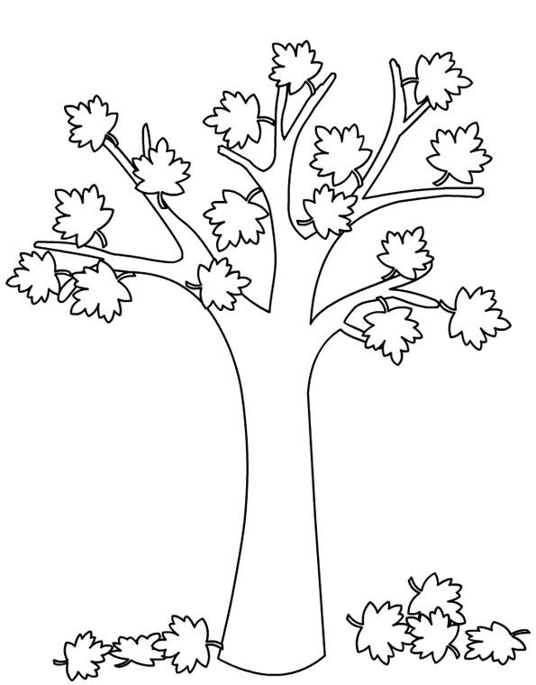 albero_autunno_da_colorare_18.jpg (595×760)
