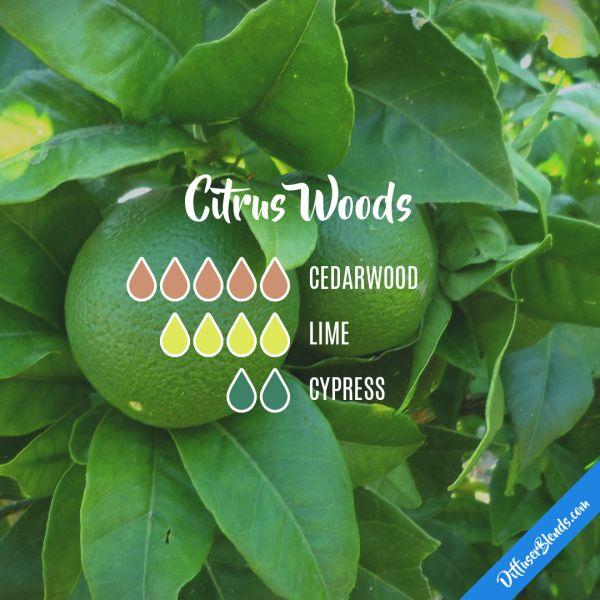 Citrus Woods - Essential Oil Diffuser Blend