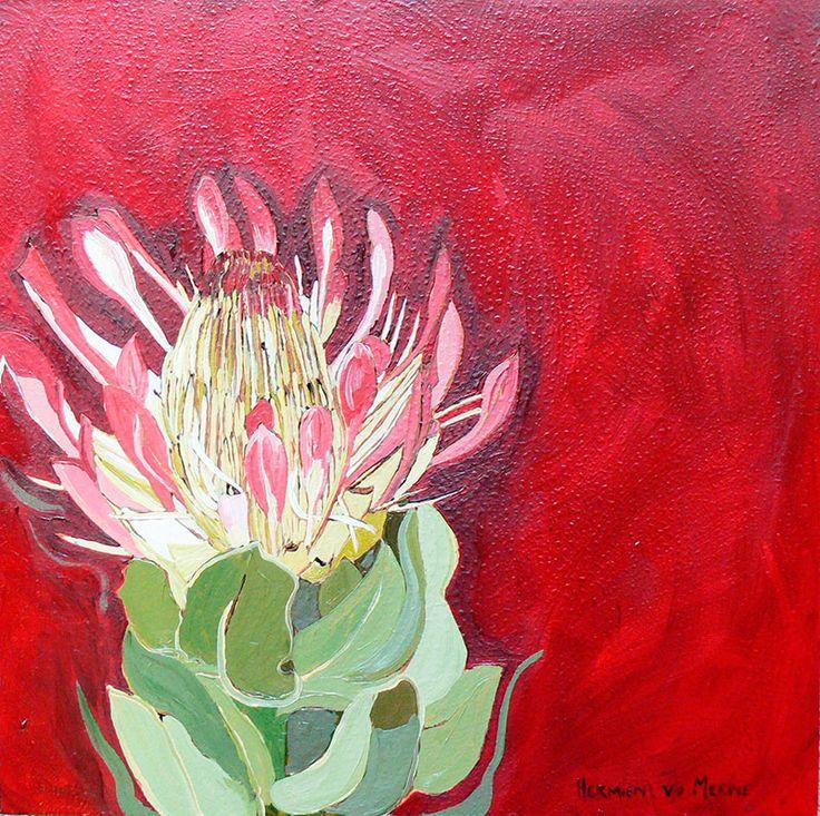 Title: Breëblaar/Suikerbos Medium: Oil paint on canvas Size: 400mm x 400mm