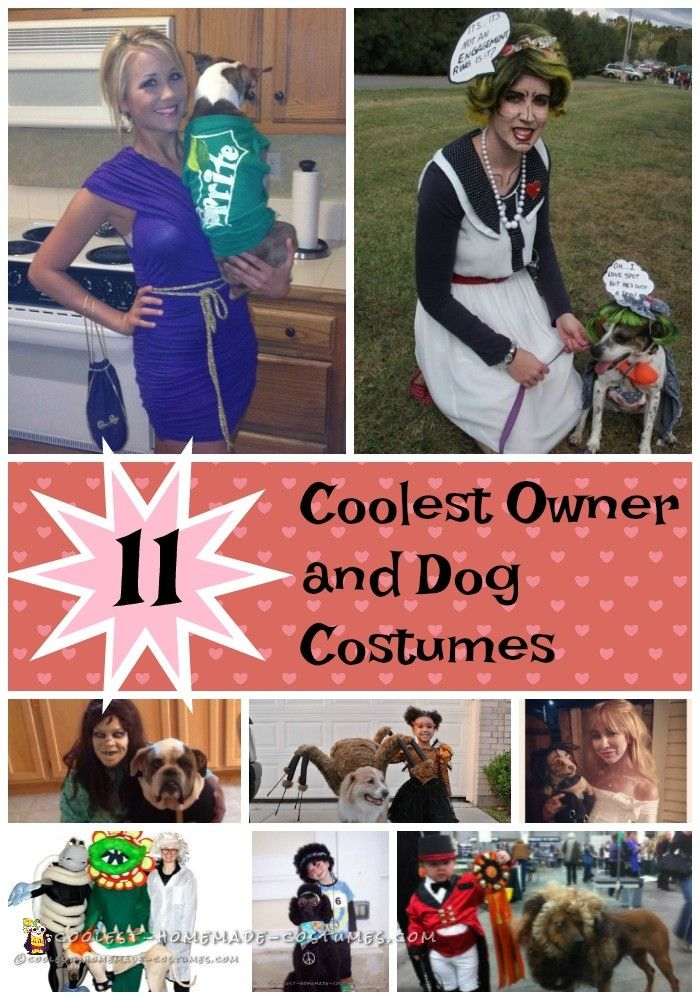 Top 11 Coolest Diy Owner And Dog Costumes Best Dog Halloween