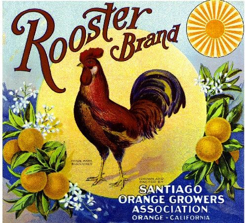 Orange County Rooster Orange Citrus Fruit Crate Label Art Print. $9.99, via Etsy.