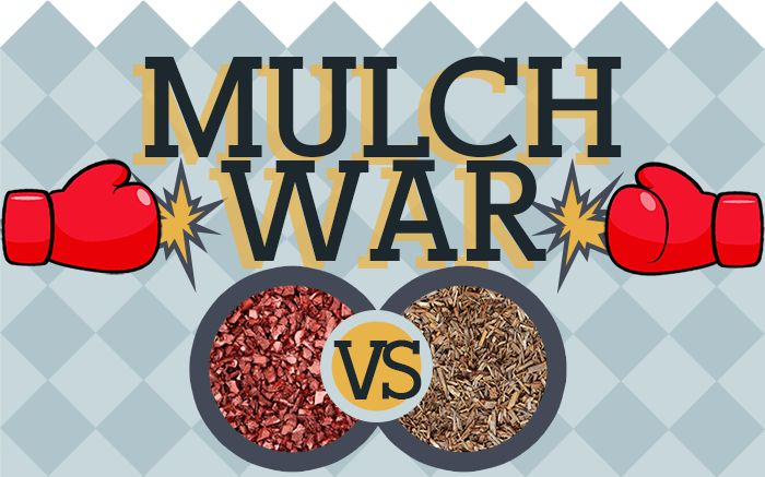 Which one is better -- wood mulch, or rubber? Find out on the blog: http://rubbermulch.com/blogs/rubbermulch/23238401-rubber-mulch-vs-wood-mulch