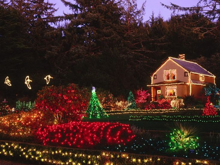 53 best images about Outdoor Holiday lights on Pinterest