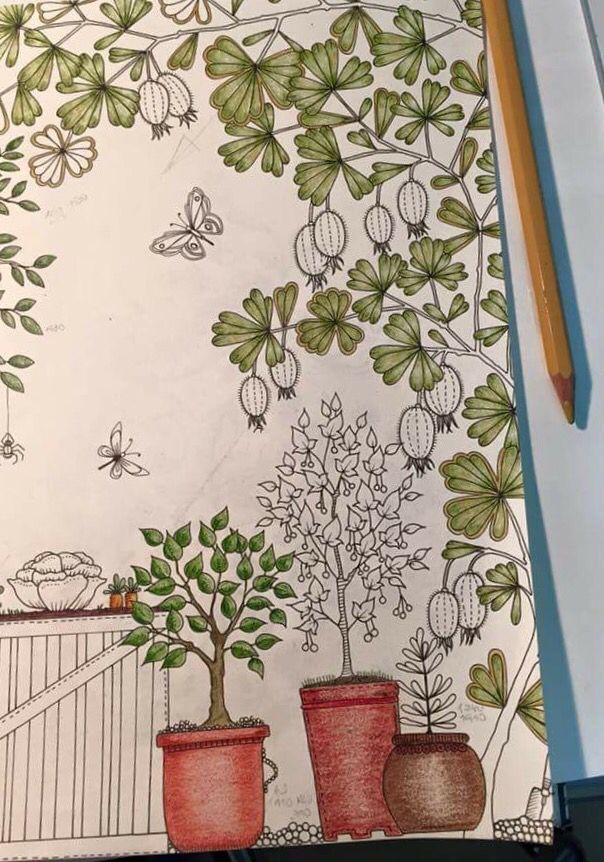 Double Page Pumpkin Well Secret Garden