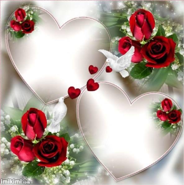 118 best Valentinstag images on Pinterest | Butterflies, Valantine ...
