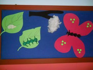 Life of cycle butterfly craft idea for kids   Crafts and Worksheets for Preschool,Toddler and Kindergarten