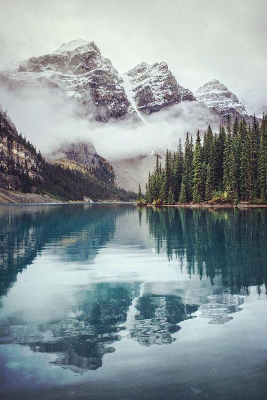 best Walls images on Pinterest