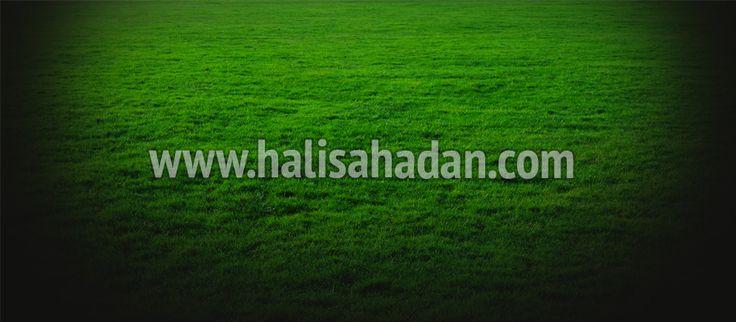 Tunkaya Halı Saha #tunkayahalısaha #halısahalar #halısaha  http://www.halisahadan.com/tunkaya-hali-saha/