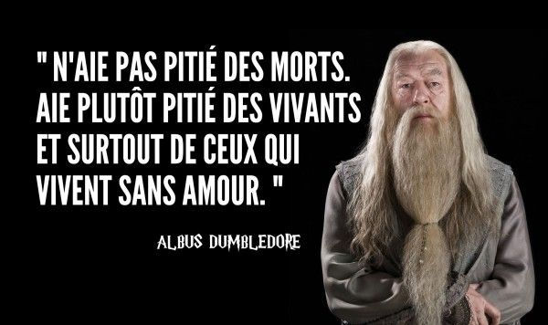 une-dumbledore (1)