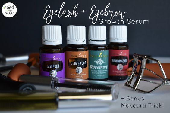 Wimper + Augenbrauenwachstumsserum | Seed to Sole #essentialoils #oilyliving #hairgrowth #lavender #cedarwood #rosemary #frankincense