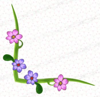 Plant Floral Digital Corner Drawing Clipart Set Of Png Borders And
