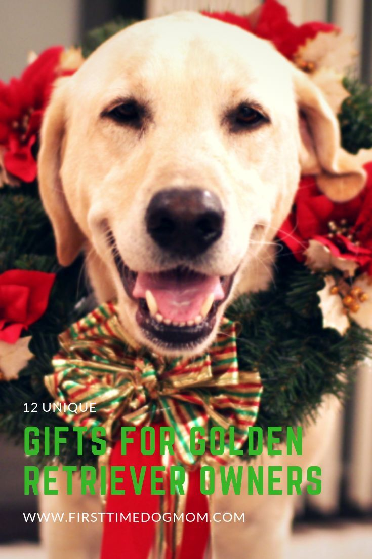 Are You Searching For A Unique Gift For A Golden Retriever Owner