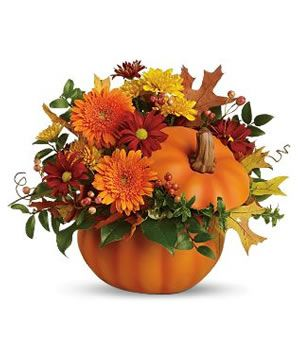 Flower Gifts Online: Celebrate November With Chrysanthemum Flowers