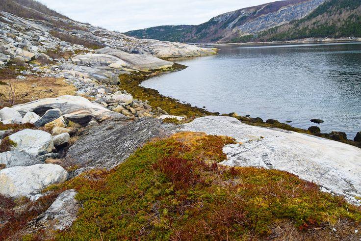 Ute på tur langs Elvefjorden ved Åseli     http://www.tursiden.no/ute-pa-tur-langs-elvefjorden-ved-aseli/