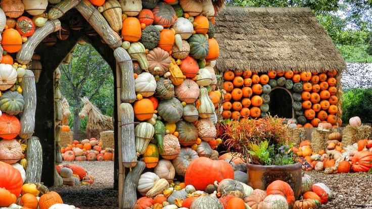 These fall festivals are SO Texas, and we wouldn't have it any other way.