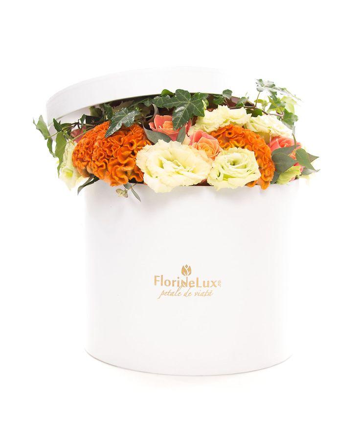 Cutie unica, speciala si plina de prospetime! Alege acum cele mai frumoase flori in cutie, cutie eleganta alba cu flori exotice!