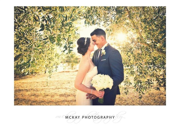 In the olive grove at Pialligo Estate Canberra wedding photo  #wedding #canberrawedding #pialligoestatewedding